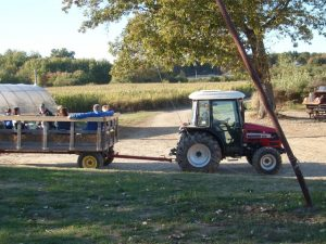 Wojcik Farm Tractor & Trailer